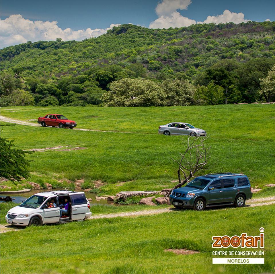 Diversión cerca de CDMX y Morelos