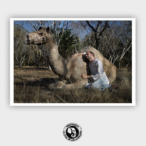 Leo Bono en Zoofari