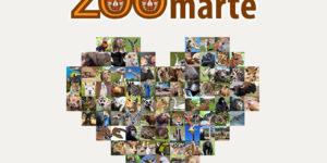Gracias por ZOOmarte con Zoofari