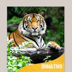 Donativo para ZOOmarme