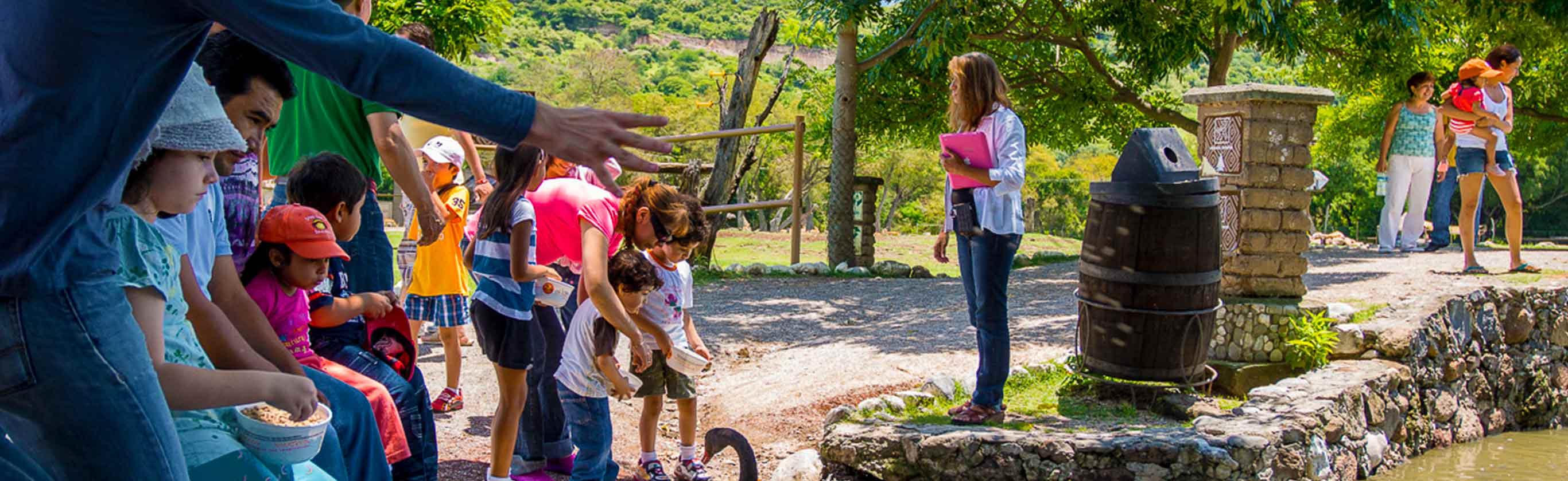 Grupos y escuelas Zoofari