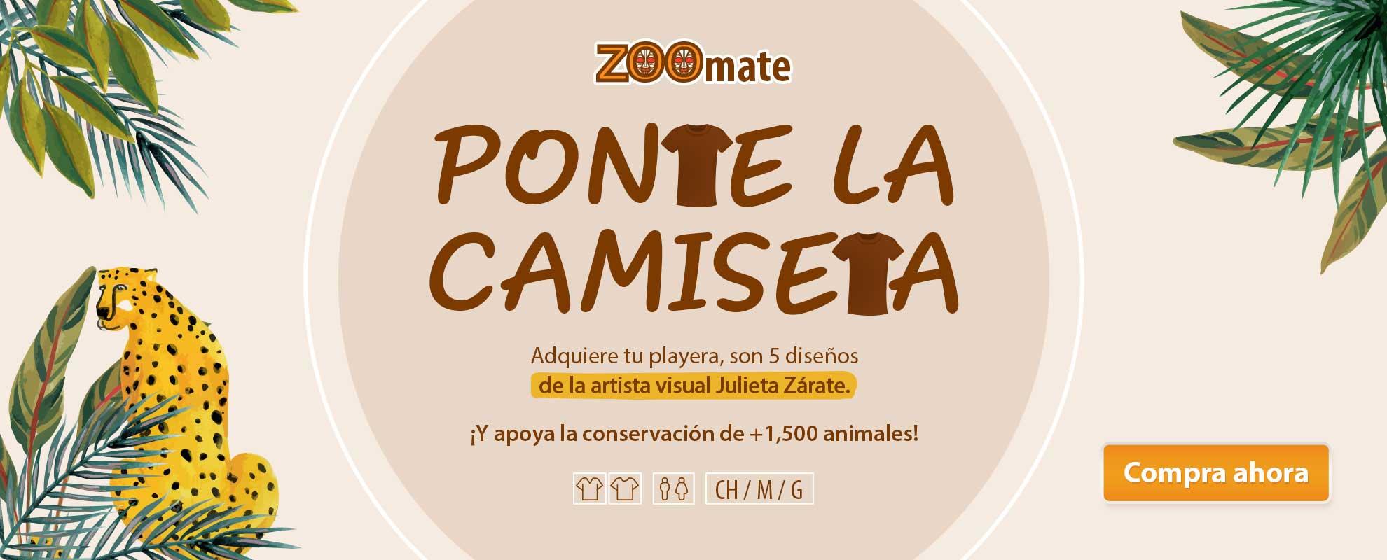 ZOF_2103_SitioHome_Desktop_Zoomemonos_PlayerasJuliette_1980x800px