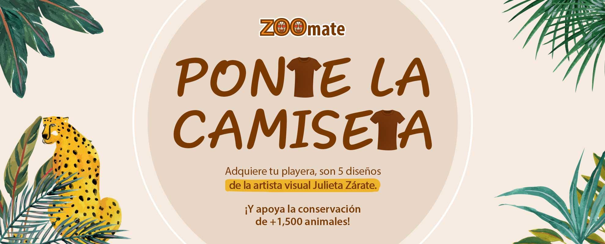 ZOF_2103_SitioTienda_Desktop_Zoomemonos_PlayerasJuliette_1140x350px